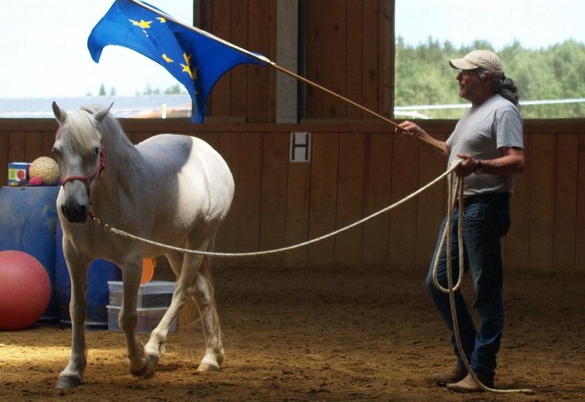 Pferde für Therapie und Freizeit, ausgebildet mit der TGT®-Methode von Pete Kreinberg, konnten bei uns ein glückliches Leben führen. Foto ist © Manfred Laib