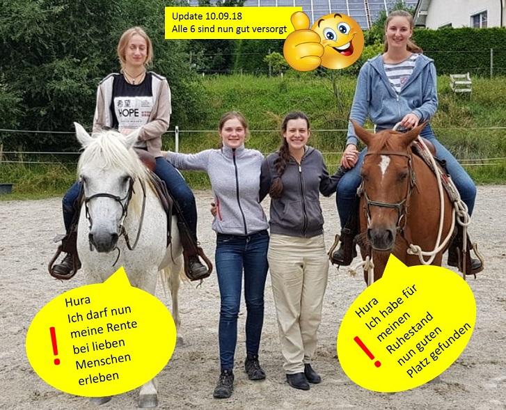 die letzten beiden Pferde ....... suchen langfristig einen neuen Lebens- und Schaffensplatz