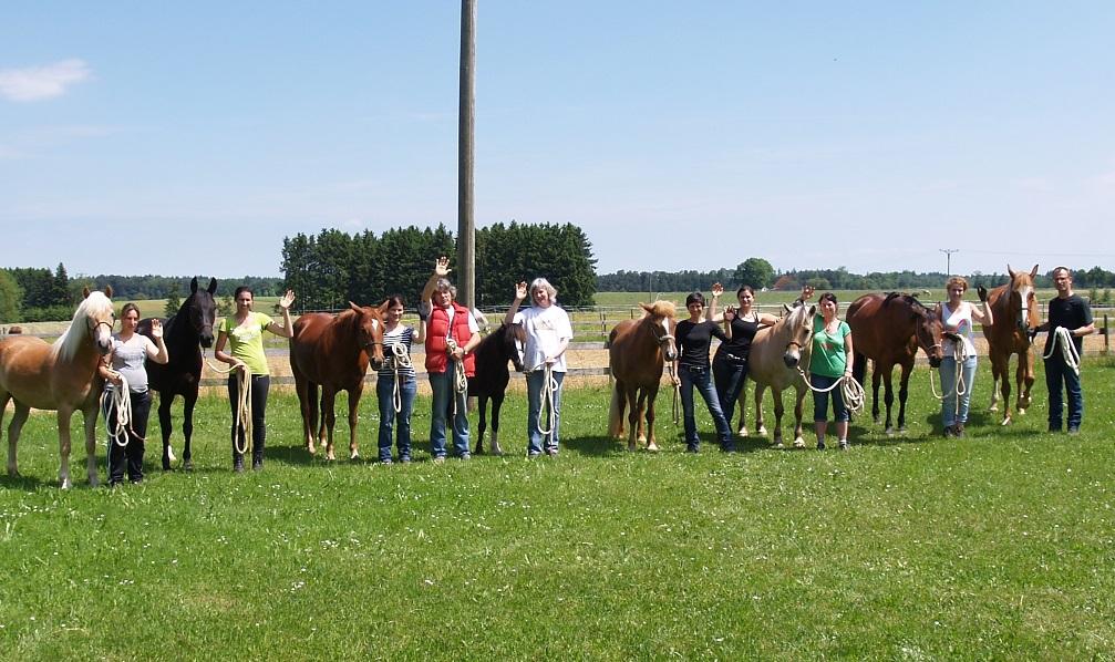 viele Teilnehmer unserer TGT Kurse starteten am Pfeifferhof mit Ihren Pferden in ein entspanntes Miteinander