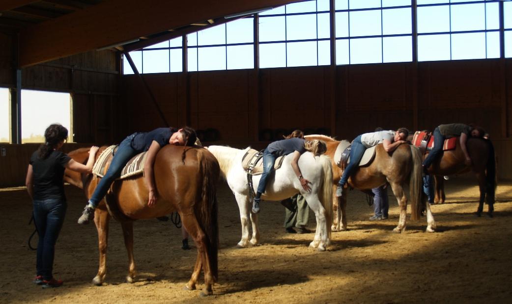 Progressive Muskelentspannung und die innere Spannung loslassen mit dem Pferd wurde bei uns nicht nur erfunden sondern praktiziert.  Foto ist © Manfred Laib